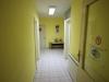 Самостоятелни стаи Изненада в град Елхово